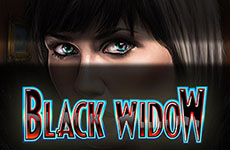 Black Widow Slot by IGT