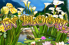 In Bloom Slot by IGT