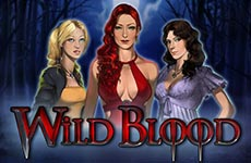 Wild Blood Slot by Play'n Go