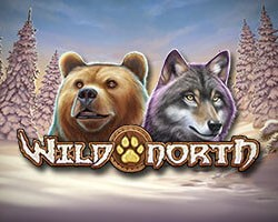 Wild North Slot Review by Play'n Go
