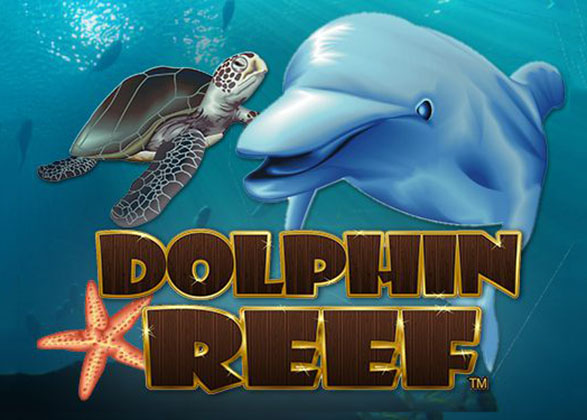 Video slot dolphin reef