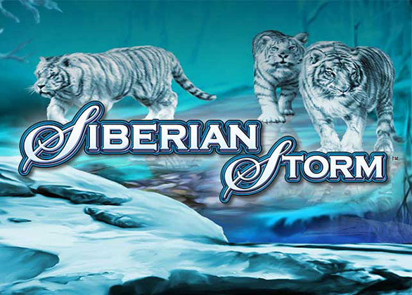 Siberian Storm Slot Review by IGT